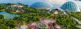 Singapour, les merveilles de la ville jardin