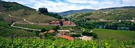 six-senses-douro-valley_4128.jpg