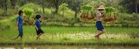 Vietnam, l'aventure en famille