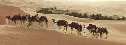 5 façons de vivre l'expérience du désert d'Abu Dhabi
