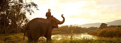 Anantara : une expérience unique en Thaïlande