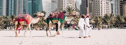 Le Meilleur des Emirats