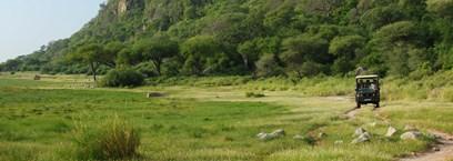 Safari en Tanzanie : les grands parcs et réserves animalières