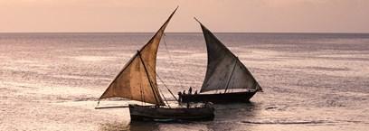 Tanzanie, savane & sable fin