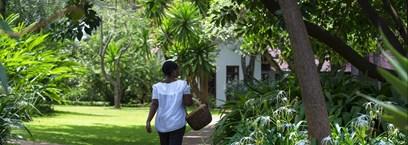 The Plantation Lodge